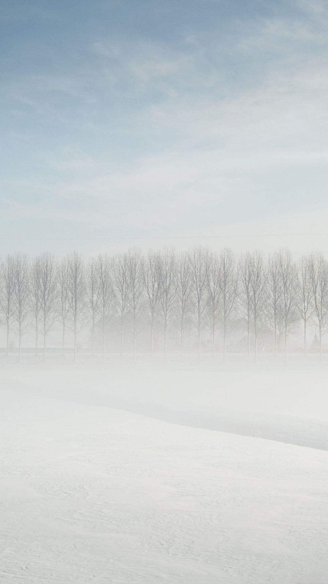 Foggy Forest Distance Snow Android Wallpaper