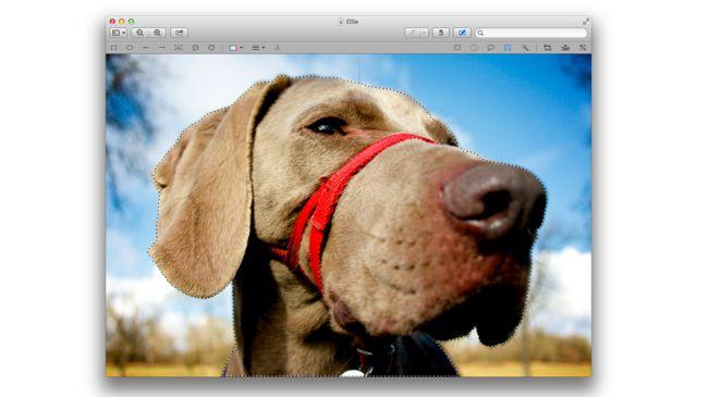 MAC264.mainfeat.Crop_tweak_images_a-650-80
