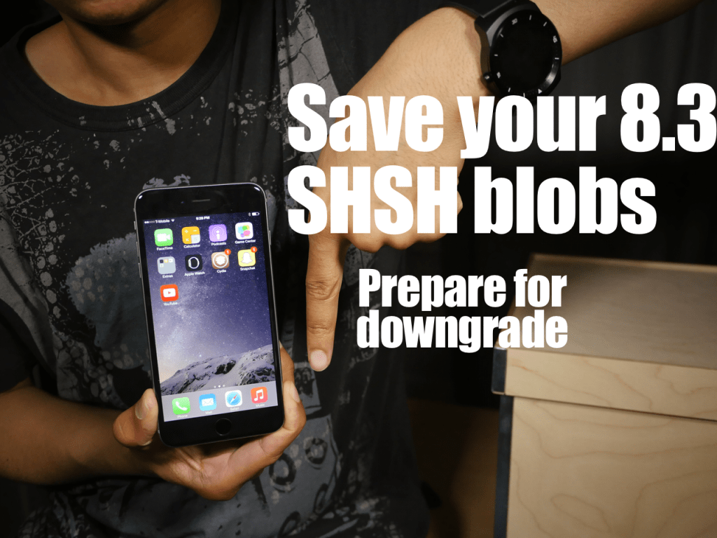Prepare-for-iOS-8.3-Downgrade-SHSH-blobs-TinyUmbrella-1024x768