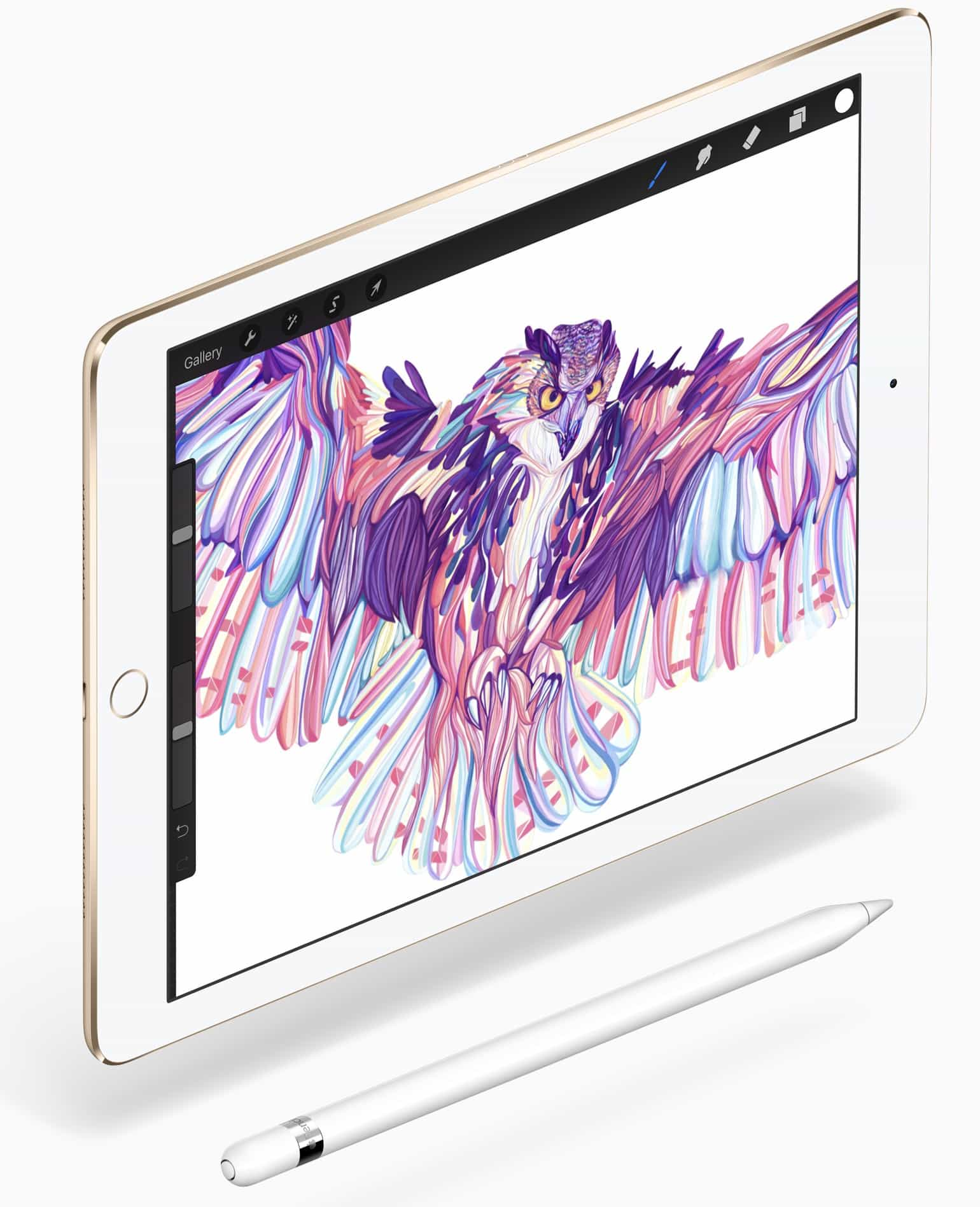 iPad Pro Mini 9,7 pollici