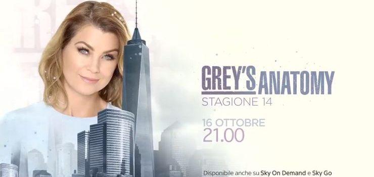Greys Anatomy 14 Streaming Ecco Come Fare