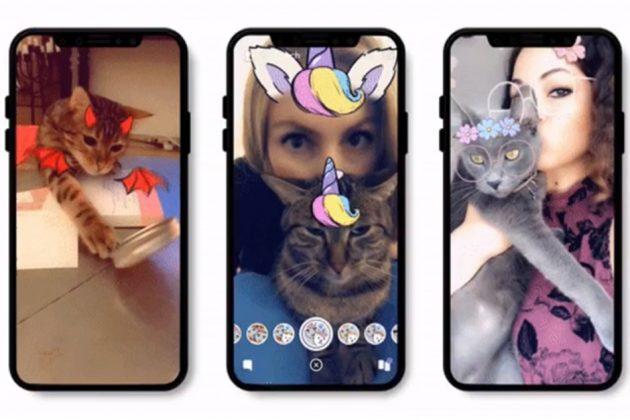 Snapchat riconosce anche i gatti