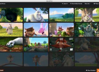MoviePrint Creare Video Multipli